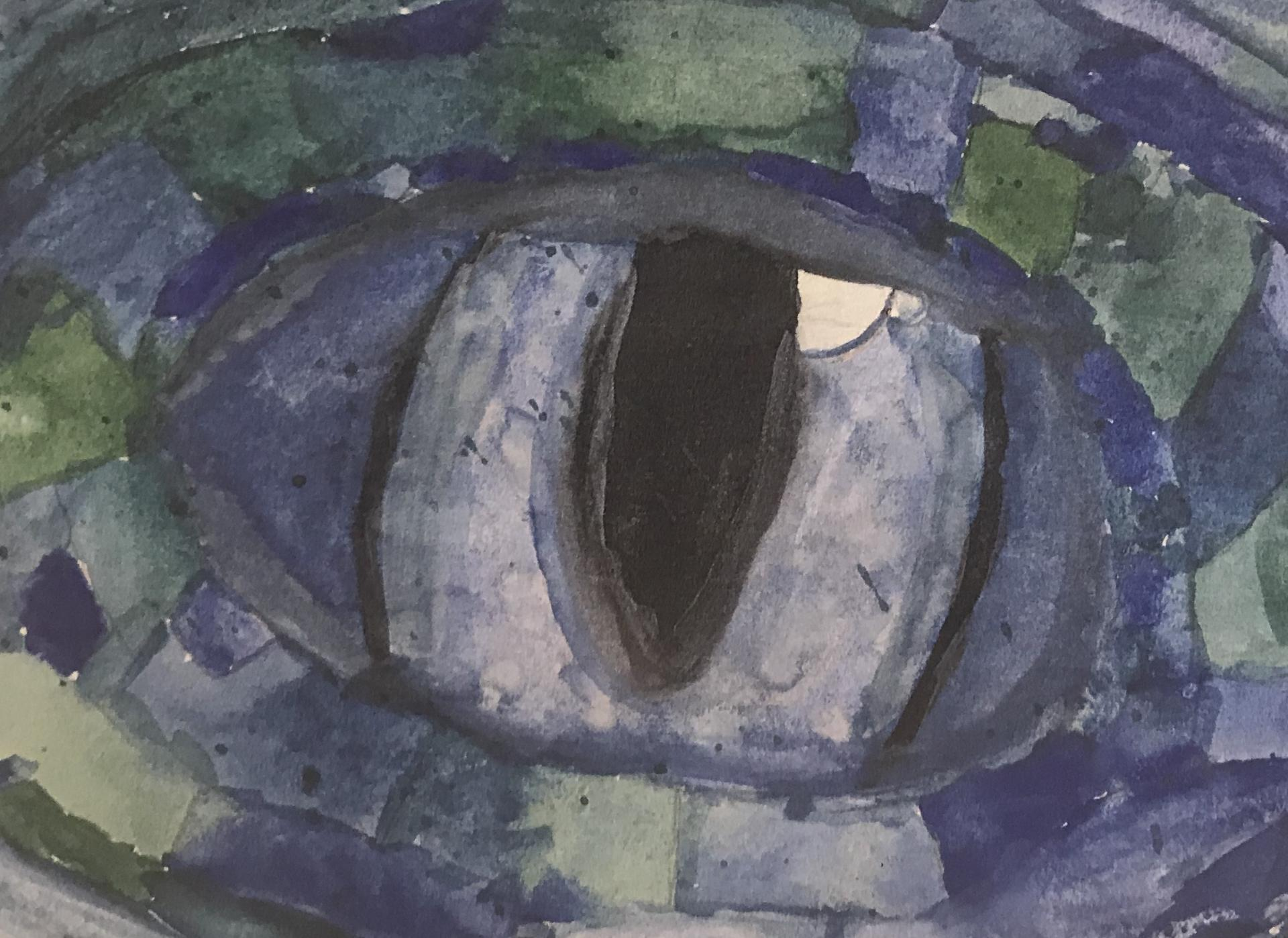 Dragon's Eye(1)